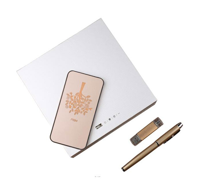 I6 Backlight Power Bank 3 in 1 Gift Set